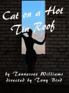 cat-on-a-hot-tin-roof-postcard-front-210x300